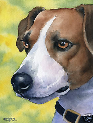 JACK RUSSELL TERRIER Dog Watercolor 8 x 10 ART Print Signed by Artist DJR