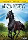The New Adventures of Black Beauty: Season 1 (DVD, 2010, 3-Disc Set)