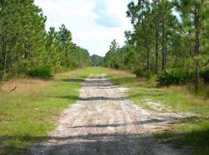 31-AC-CENTRAL-FLORIDA-DIRT-ROADS-DISNEY-amp-BEACH-NEAR