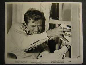 1963-Alfred-Hitchcocks-The-Birds-VINTAGE-PHOTO-454g