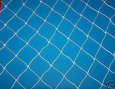 "60' x 35' POULTRY NETTING GAME BIRD PHEASANT NET AVIARY NETS 2"" Lightweight"