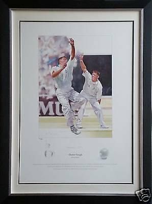 Darren Gough Signed Limited Edition Cricket Print England Display Framed AFTAL