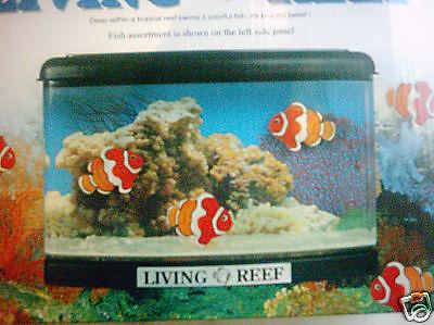 Posten Aquarium bestehend aus je VE12 Stück Aquarien mit 3 Dekofischen Breit21cm