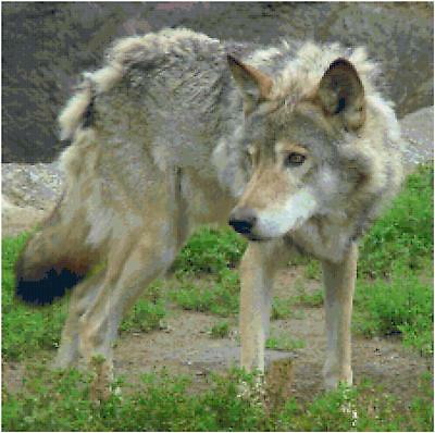 Wolf Counted Cross Stitch Pattern Design Animal