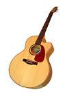 Seagull Jumbo Body Acoustic Electric Guitars
