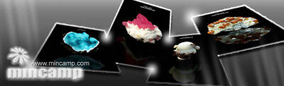 mincamp-minerals