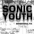 Sonic Youth etc. Sensational Fix von Sonic Youth (2010, Gebundene Ausgabe)