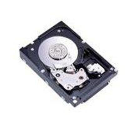 IBM 42D0410 300GB Hard Drive