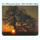 The Mountain Goats - Sunset Tree (2005)