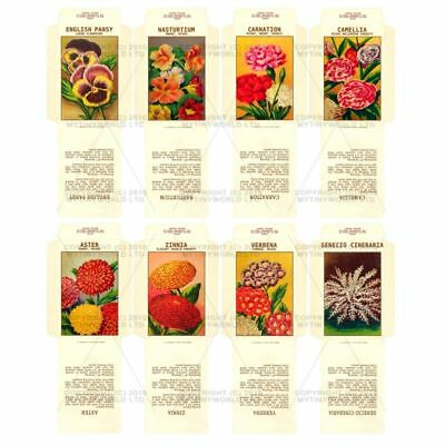 8 Dolls House Flower Seed Packets (set 5)