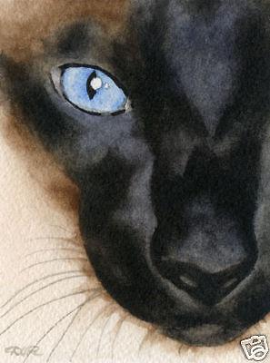 SIAMESE CAT  Watercolor 8 x 10 ART Print Signed by Artist DJ Rogers w/COA