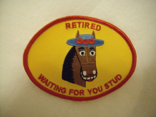 New Women Brown Horse Retired Waiting4U Stud Gold Patch