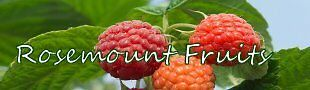Rosemount Fruits