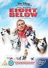 Eight Below (DVD, 2006)