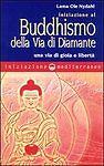 LIBRO INIZIAZIONE AL BUDDHISMO DELLA VIA DI DIAMANTE - LAMA OLE NYDAHL - Italia - LIBRO INIZIAZIONE AL BUDDHISMO DELLA VIA DI DIAMANTE - LAMA OLE NYDAHL - Italia