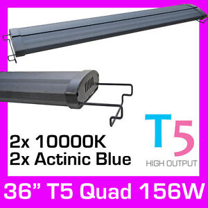 36-034-Aquarium-Light-T5-HO-LED-Cichlid-Saltwater-156W-New