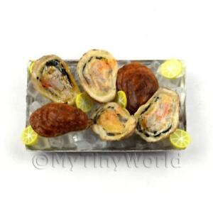 6-Oysters-Ice-Tray-Dolls-House-Mini-Food-FSHT27