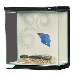 Marina large aquarium cube fish tank betta bowl zen 3l ebay for Zen fish tank