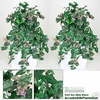 Two 36 Ivy / Grape Ivy Hanging Bush X13 Silk Plants Pu