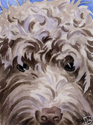 LABRADOODLE Watercolor Painting 8 x 10 ART Print Signed DJR