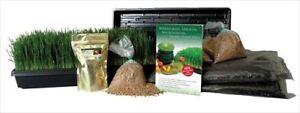 ORGANIC-WHEATGRASS-GROWING-KIT-GROW-JUICE-WHEAT-GRASS-SEEDS-TRAYS-SOIL-MORE