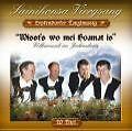 Wisst's Wo Mei Hoamat Is/Volksmusik Im Jahreskreis von Sainihonsa Viergesang,Erpfendo (2004)