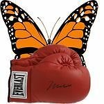 butterflyboxing