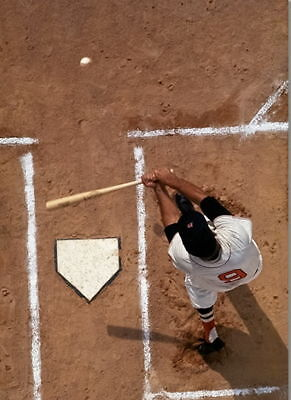 Ted Williams At Bat From Above Red Sox 8 X10 Photo