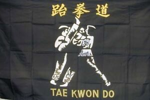 TAE KWON DO FLAG FL101 flags martial arts banners fighting tai fight sign new