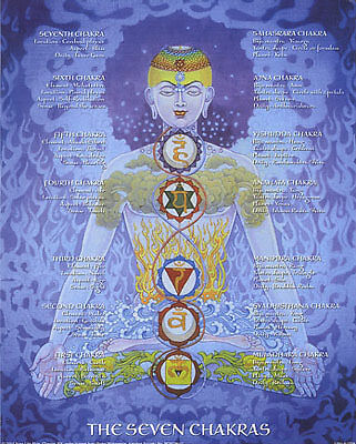 Seven 7 Chakras Poster locations definitions SM