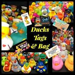 100 Duck Duck For Jeep Owners / Cruise Rubber Ducks/tags/bag Random Assortment