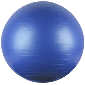 Anti-burst Physio Balance Yoga Fitness 75cm Gym Ball Exercise 30