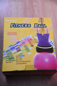 Yoga Fitness Ball With Pump 26