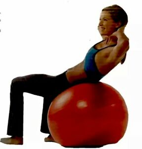 Gaiam Yoga Stability Ball 65cm Fitness Exercise Air Pump Guide Manual Red