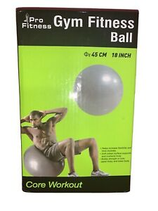 Pro Fitness Gym Fitness Ball