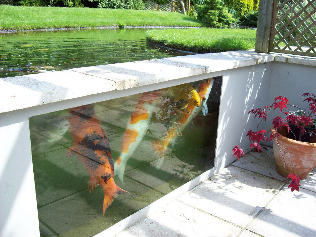 glass koi pond viewing panel atlantica gardens