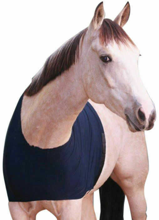 Horse Showcraft Chest+Wither Anti-rub rug Bib shoulder Guard Pony - XLarge