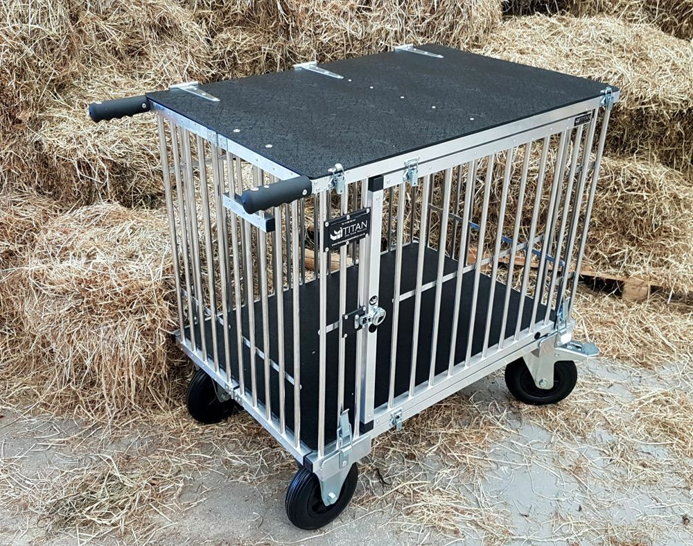 Berth Dog Show Trolley