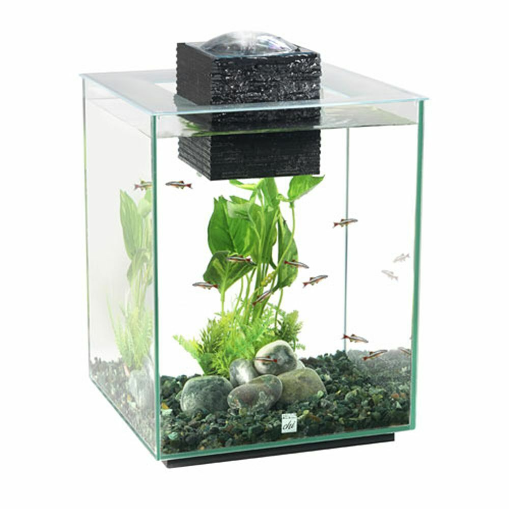 Fluval chi ii aquarium fish tank 19 litre latest version for Fluval fish tank
