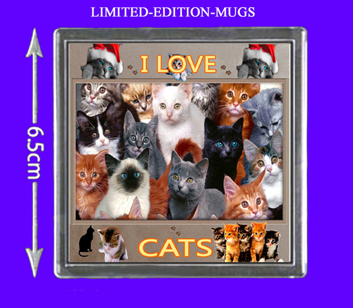I Love Cats Fridge Magnet Gift.  Beautiful Cats And Kittens Design.