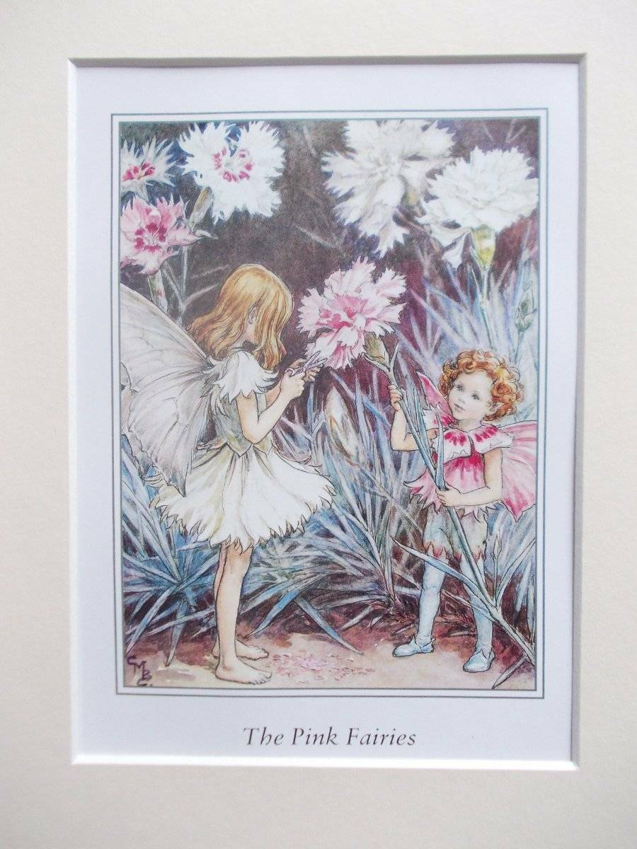 Pink Flower Fairy Cicely Mary Barker In 10in X 8in Ivory Mount 8 X