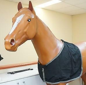 NEW Taffeta Bib Hoods & Bibs Horse Riding Care Grooming