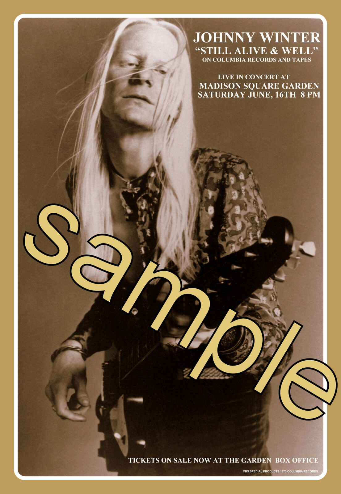 JOHNNY WINTER 8x12 MADISON SQUARE GARDEN JUNE,73 BOX OFFICE NEW ...