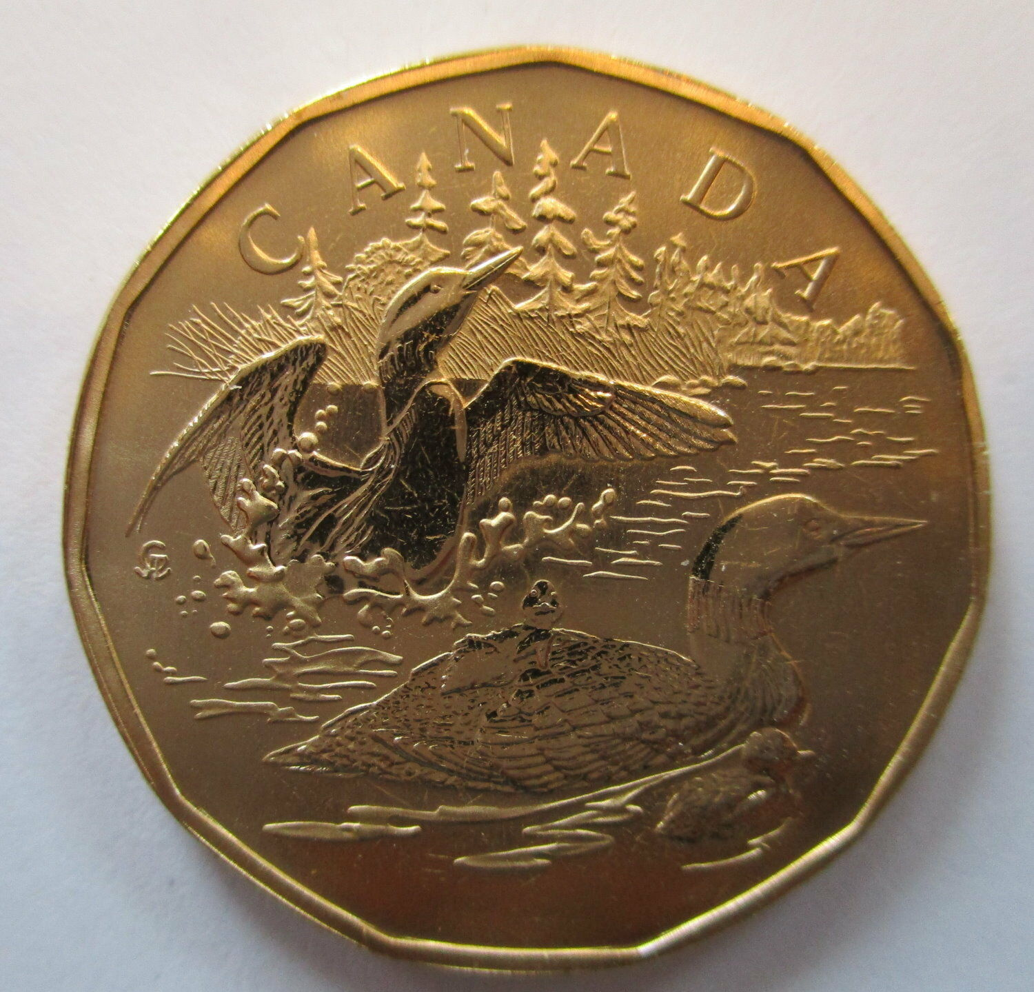 2002 Canada $1 Family Of Loons Specimen Dollar Coin • CAD ...