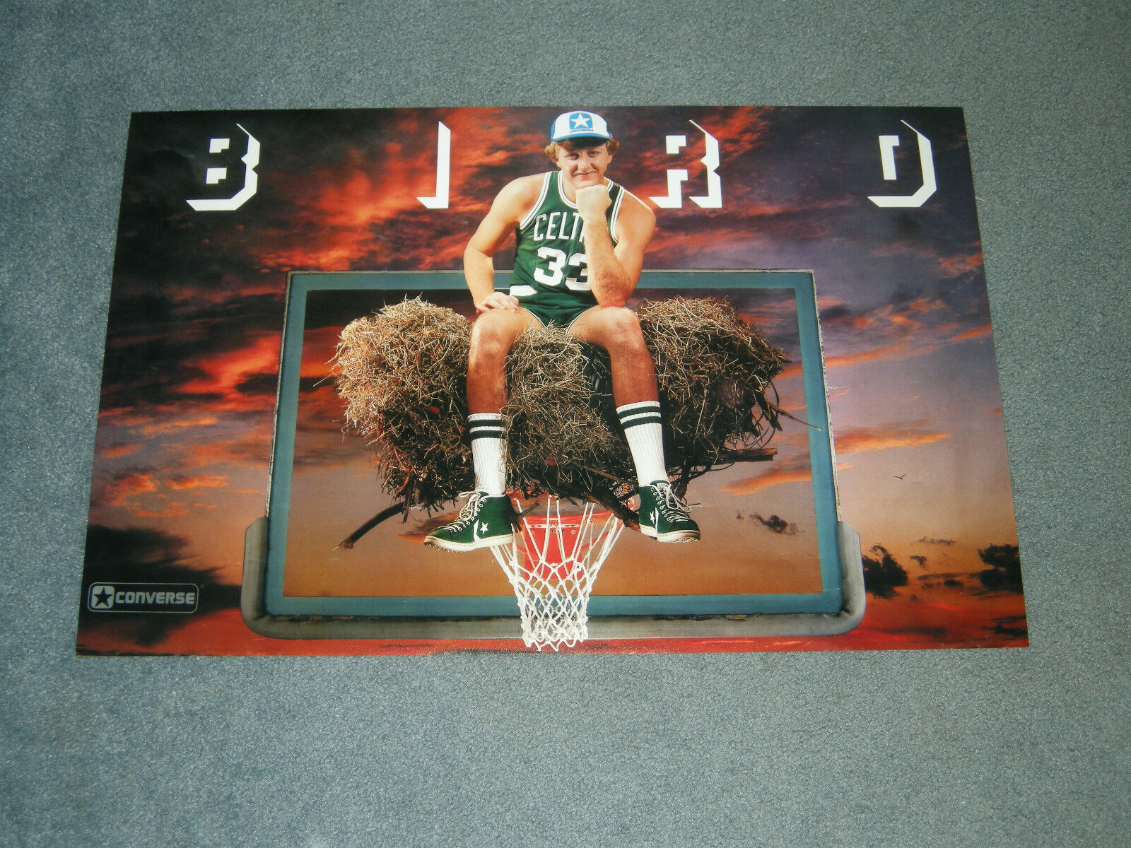 larry bird boston celtics birds nest 20x30 poster print 49 99