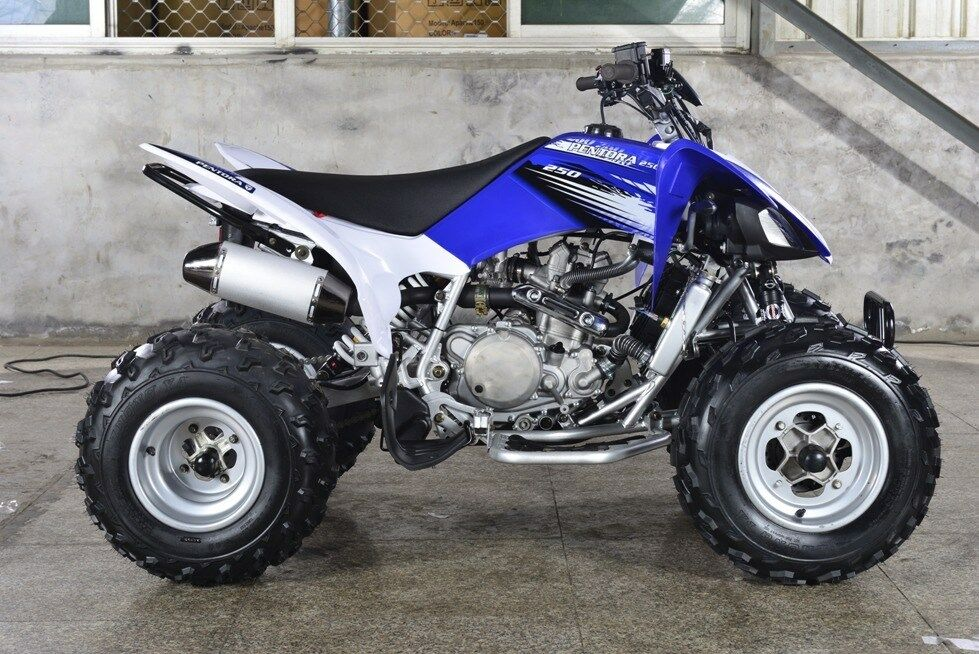crossfire mustang 250cc sports quad bike atv same size. Black Bedroom Furniture Sets. Home Design Ideas