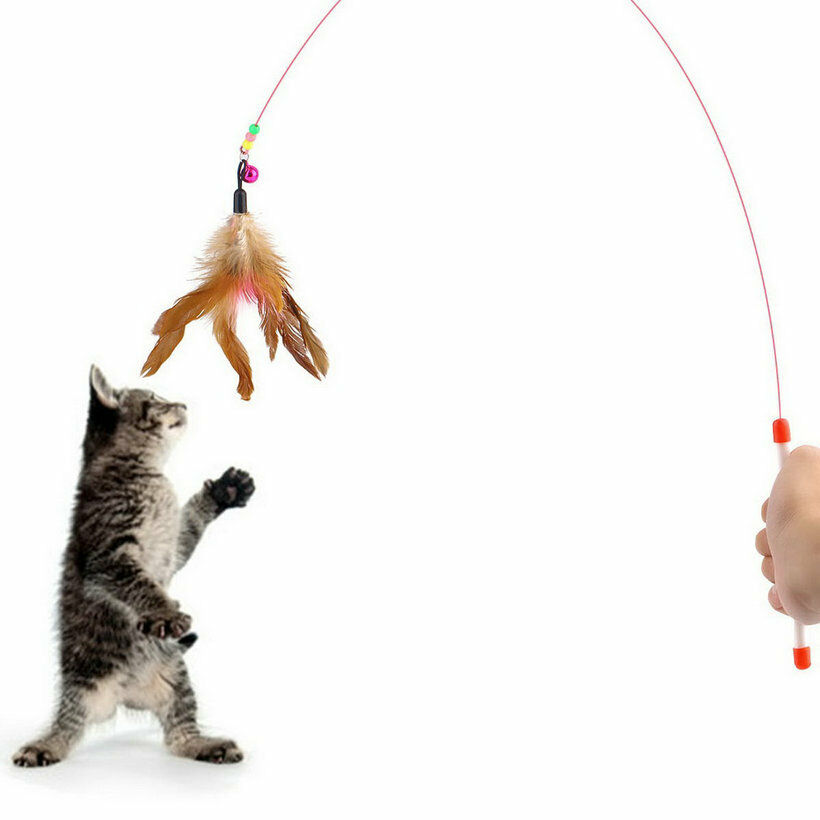 Kitten Cat Pet Toy Wire Chaser Wand Teaser Feather With Bell Beads Play Fun PF