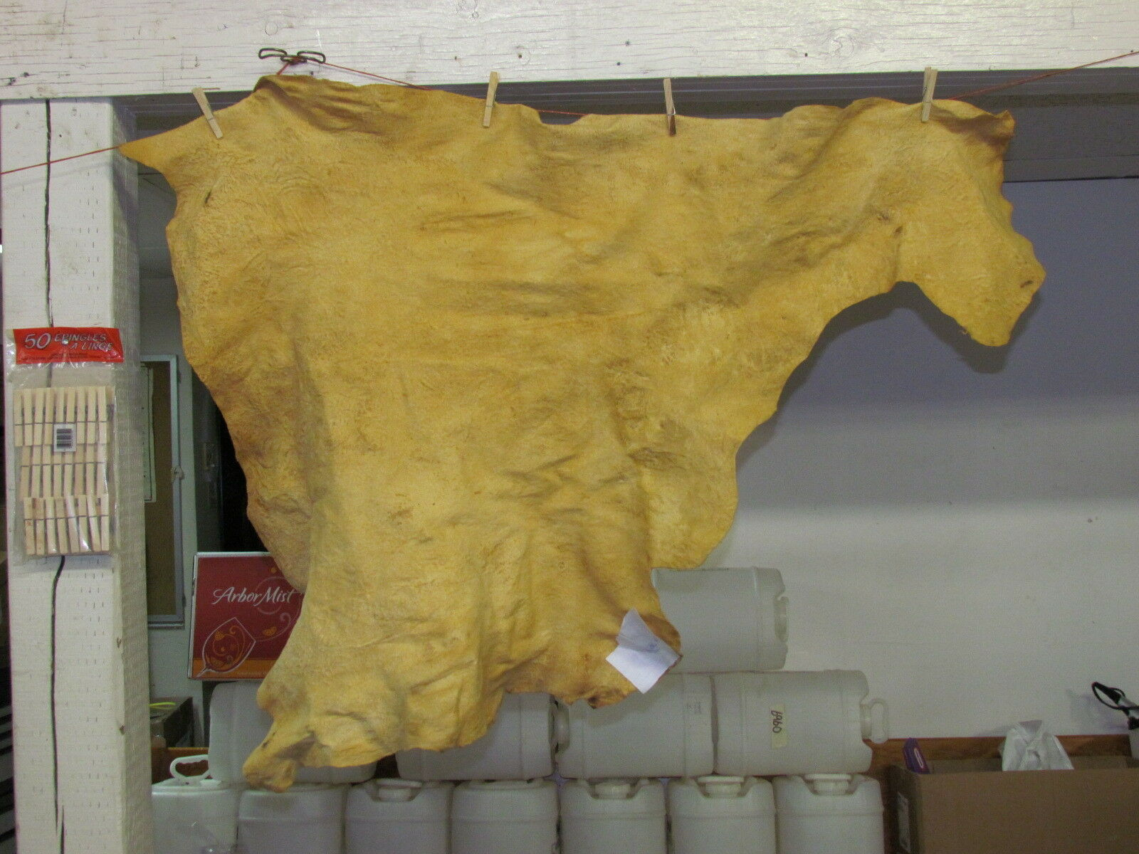 """Native American Light Color Home Tanned Hide 49"""" By 35"""" Irregular Shaped"""
