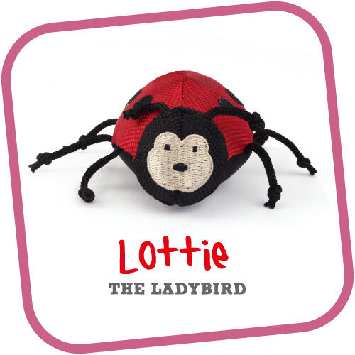 Beco Pets Cat Wand Toy Lottie the Ladybird, Premium Service, Fast Dispatch