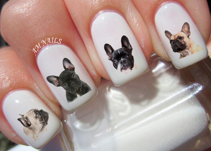 FRENCH BULLDOG NAIL Art Stickers Transfers Decals Set of 54 - $3.99 ...